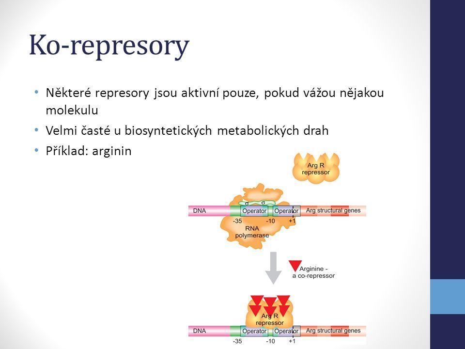 Ko-represory • Některé represory jsou aktivní pouze, pokud vážou nějakou molekulu • Velmi časté u biosyntetických metabolických drah • Příklad: argini