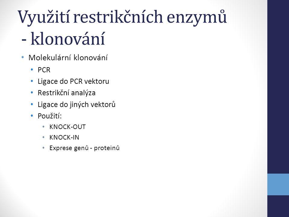 • Molekulární klonování • PCR • Ligace do PCR vektoru • Restrikční analýza • Ligace do jiných vektorů • Použití: • KNOCK-OUT • KNOCK-IN • Exprese genů
