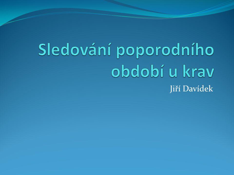 Jiří Davídek