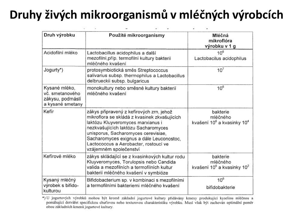 Druhy živých mikroorganismů v mléčných výrobcích
