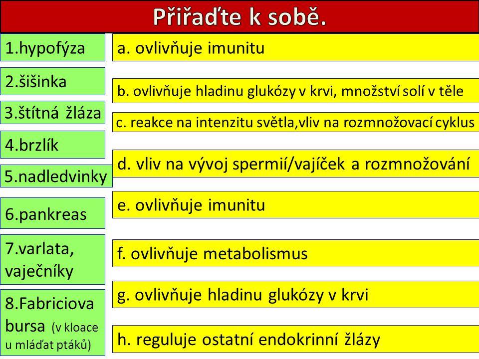 1.hypofýza 2.šišinka 3.štítná žláza 4.brzlík 5.nadledvinky 6.pankreas 7.varlata, vaječníky 8.Fabriciova bursa (v kloace u mláďat ptáků) h. reguluje os