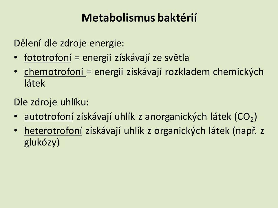 Metabolizmus baktérií Zdroj energie: A.Autotrofní A.1 Fotoautotrofní – bakteriochlorofyl, energie ze slunečního záření A.2 Chemoauto(lito)trofní – energie oxidací anorg.