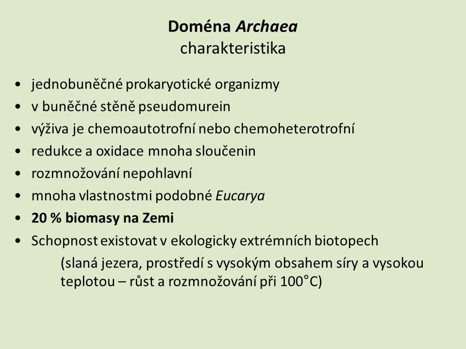 •jednobuněčné prokaryotické organizmy •v buněčné stěně pseudomurein •výživa je chemoautotrofní nebo chemoheterotrofní •redukce a oxidace mnoha sloučen