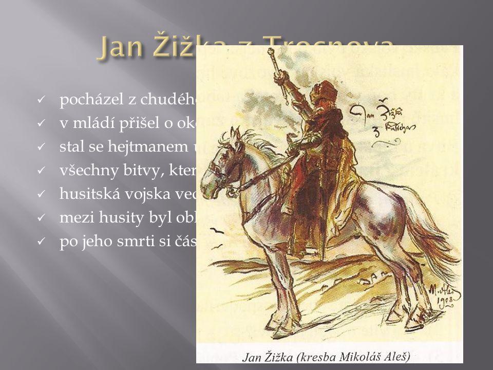  pocházel z chudého zemanského rodu  v mládí přišel o oko ve vojsku u královského dvora  stal se hejtmanem u husitů  všechny bitvy, které vedl, sk