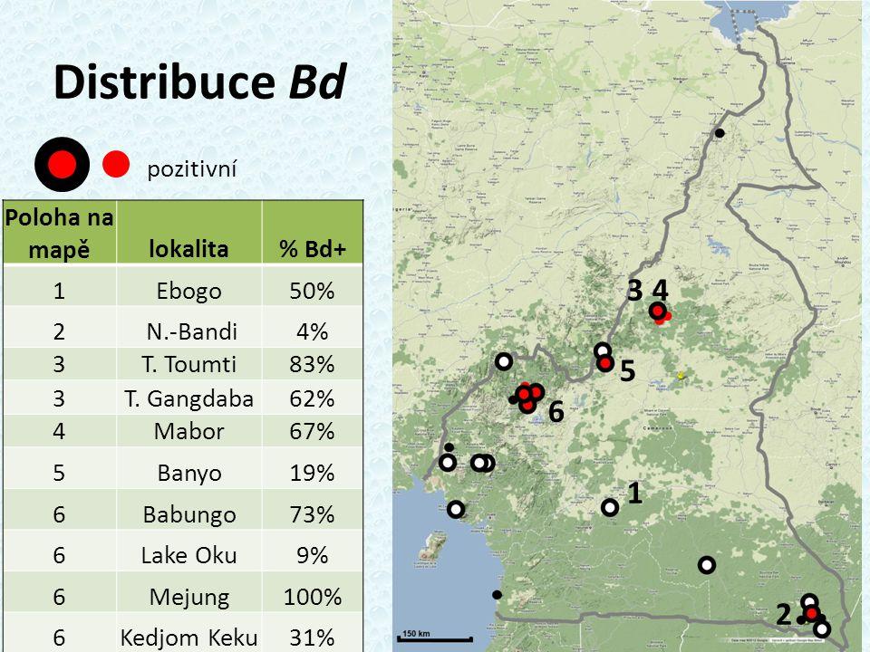 Distribuce Bd pozitivní Poloha na mapělokalita% Bd+ 1Ebogo50% 2 N.-Bandi4% 3T.