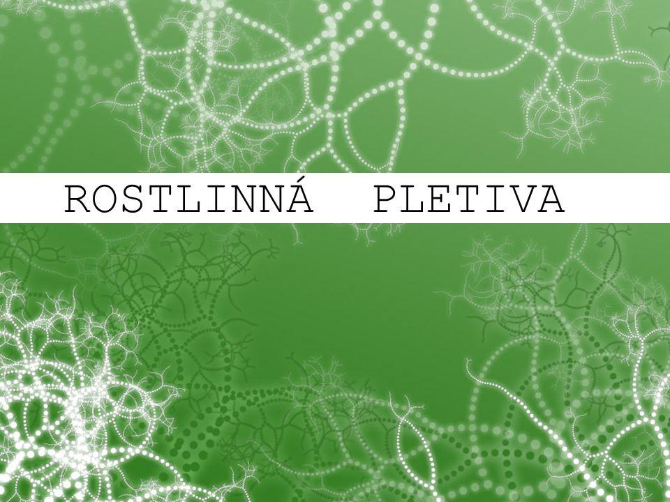 © Letohradské soukromé gymnázium o.p.s. ROSTLINNÁ PLETIVA