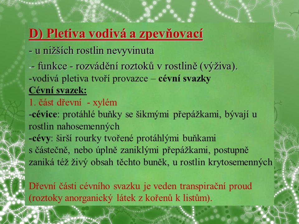 D) Pletiva vodivá a zpevňovací - u nižších rostlin nevyvinuta - - funkce - rozvádění roztoků v rostlině (výživa).
