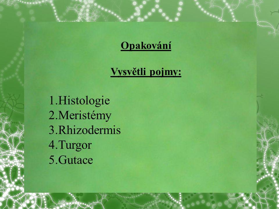 © Letohradské soukromé gymnázium o.p.s. Opakování Vysvětli pojmy: 1.Histologie 2.Meristémy 3.Rhizodermis 4.Turgor 5.Gutace