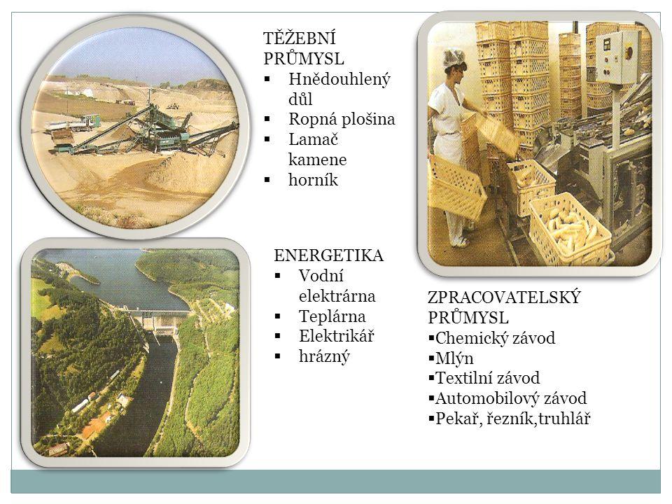 TĚŽEBNÍ PRŮMYSL  Hnědouhlený důl  Ropná plošina  Lamač kamene  horník ENERGETIKA  Vodní elektrárna  Teplárna  Elektrikář  hrázný ZPRACOVATELSK