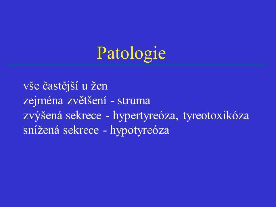 Patologie vše častější u žen zejména zvětšení - struma zvýšená sekrece - hypertyreóza, tyreotoxikóza snížená sekrece - hypotyreóza