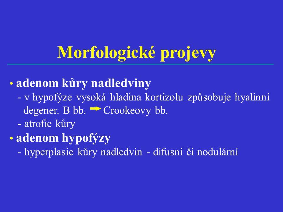 Morfologické projevy • adenom kůry nadledviny - v hypofýze vysoká hladina kortizolu způsobuje hyalinní degener. B bb. Crookeovy bb. - atrofie kůry • a
