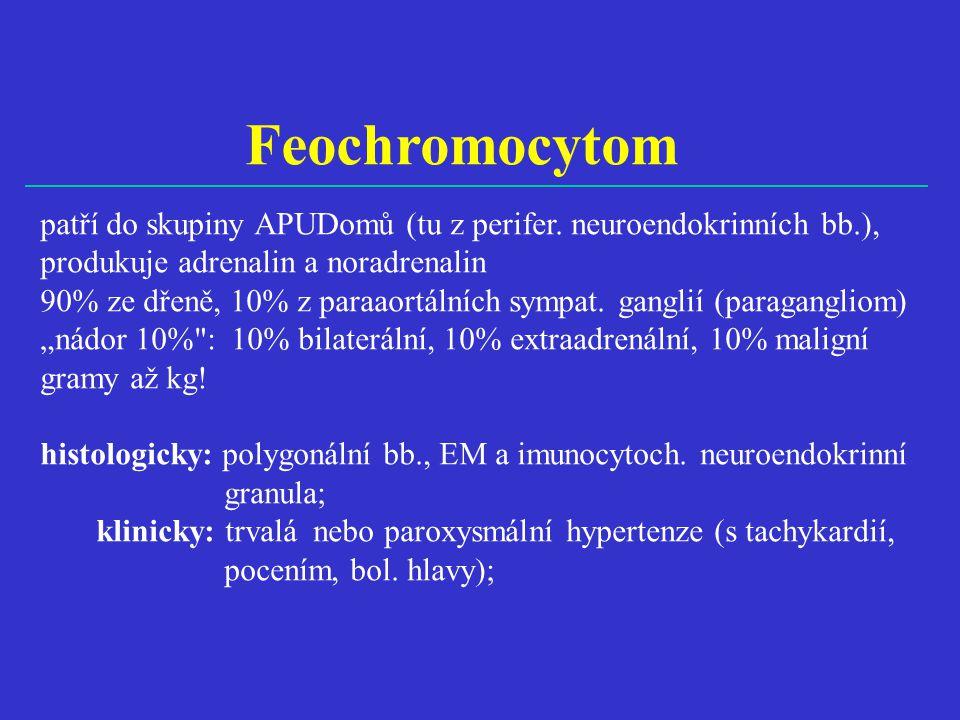 Feochromocytom patří do skupiny APUDomů (tu z perifer. neuroendokrinních bb.), produkuje adrenalin a noradrenalin 90% ze dřeně, 10% z paraaortálních s