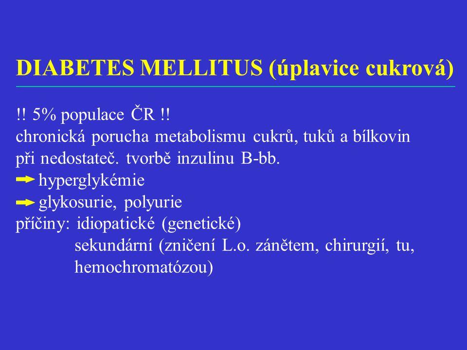DIABETES MELLITUS (úplavice cukrová) !.5% populace ČR !.