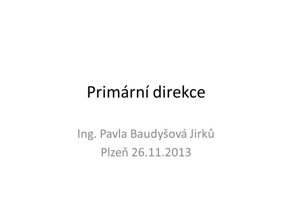 Primární direkce Ing. Pavla Baudyšová Jirků Plzeň 26.11.2013