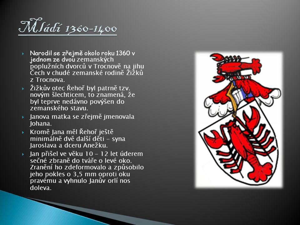  Narodil se zřejmě okolo roku 1360 v jednom ze dvou zemanských poplužních dvorců v Trocnově na jihu Čech v chudé zemanské rodině Žižků z Trocnova. 