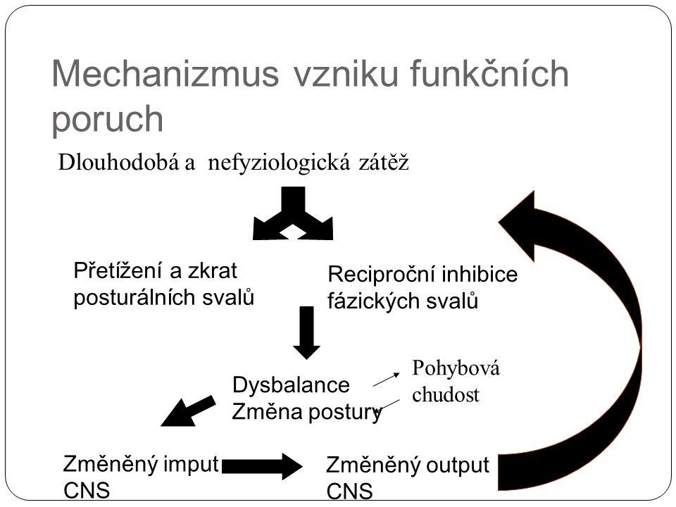 Mechanizmus vzniku funkčních poruch Dlouhodobá a nefyziologická zátěž Přetížení a zkrat posturálních svalů Reciproční inhibice fázických svalů Dysbala