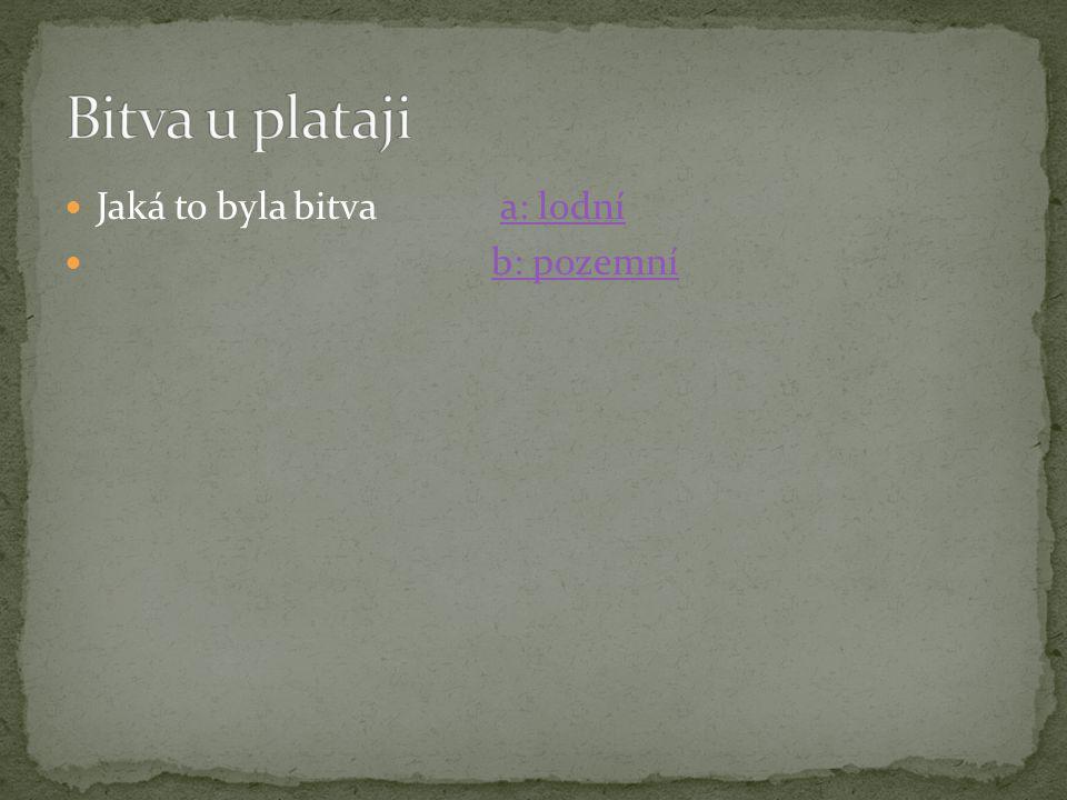  autor: Petr Tamele.Založeno 7.4.2010.
