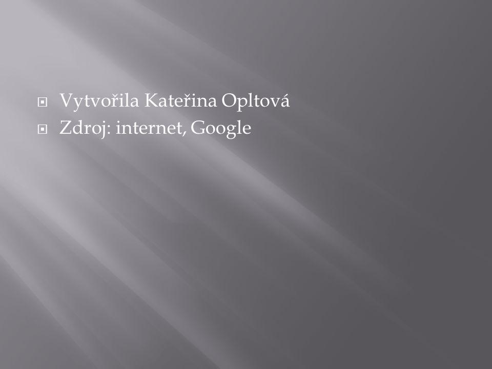  Vytvořila Kateřina Opltová  Zdroj: internet, Google