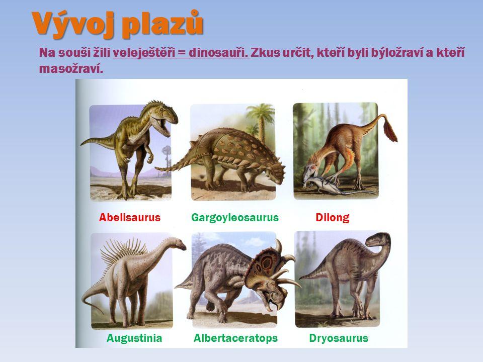 Vývoj plazů Na souši žili veleještěři = dinosauři. Zkus určit, kteří byli býložraví a kteří masožraví. Abelisaurus Gargoyleosaurus Dilong Augustinia A