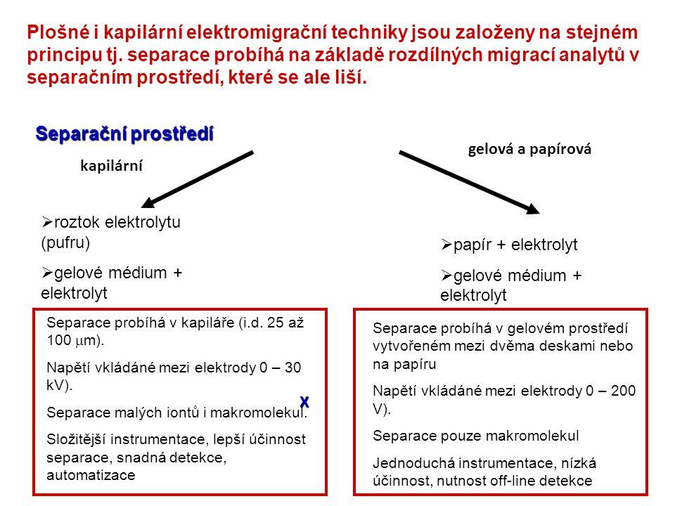 Plošné i kapilární elektromigrační techniky jsou založeny na stejném principu tj. separace probíhá na základě rozdílných migrací analytů v separačním
