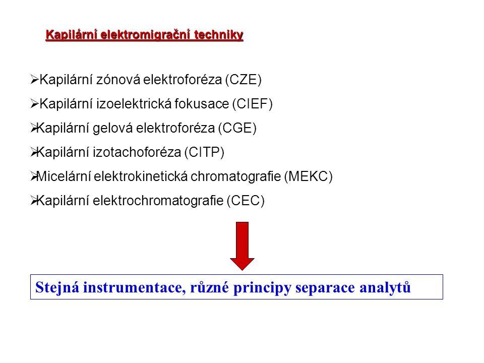 Kapilární elektromigrační techniky  Kapilární zónová elektroforéza (CZE)  Kapilární izoelektrická fokusace (CIEF)  Kapilární gelová elektroforéza (