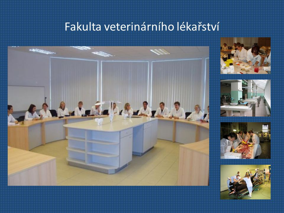 Fakulta veterinárního lékařství