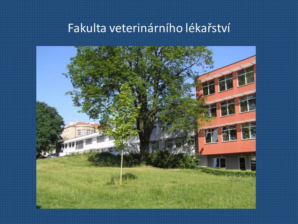 Fakulta veterinárního lékařství Profesní příležitosti pro absolventy soukromá veterinární praxestátní veterinární správadiagnostika, výzkumné instituce a laboratoře farmaceutické firmypotravinářský průmysl, hygiena a technologie potravin akademická kariéra (převážně u Ph.D.)