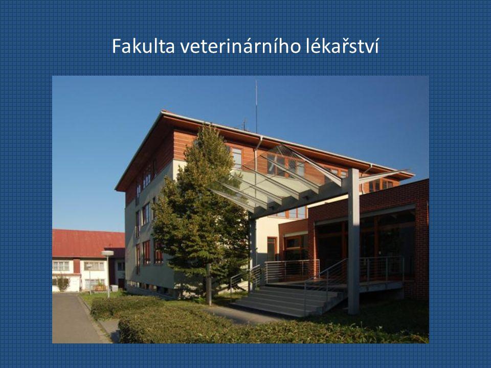 Fakulta veterinárního lékařství Přijímací řízení Pro akademický rok 2012/2013 se počítá s přijetím 120 - 160 uchazečů v českém MSP Termín pro podání přihlášky: do 28.2.