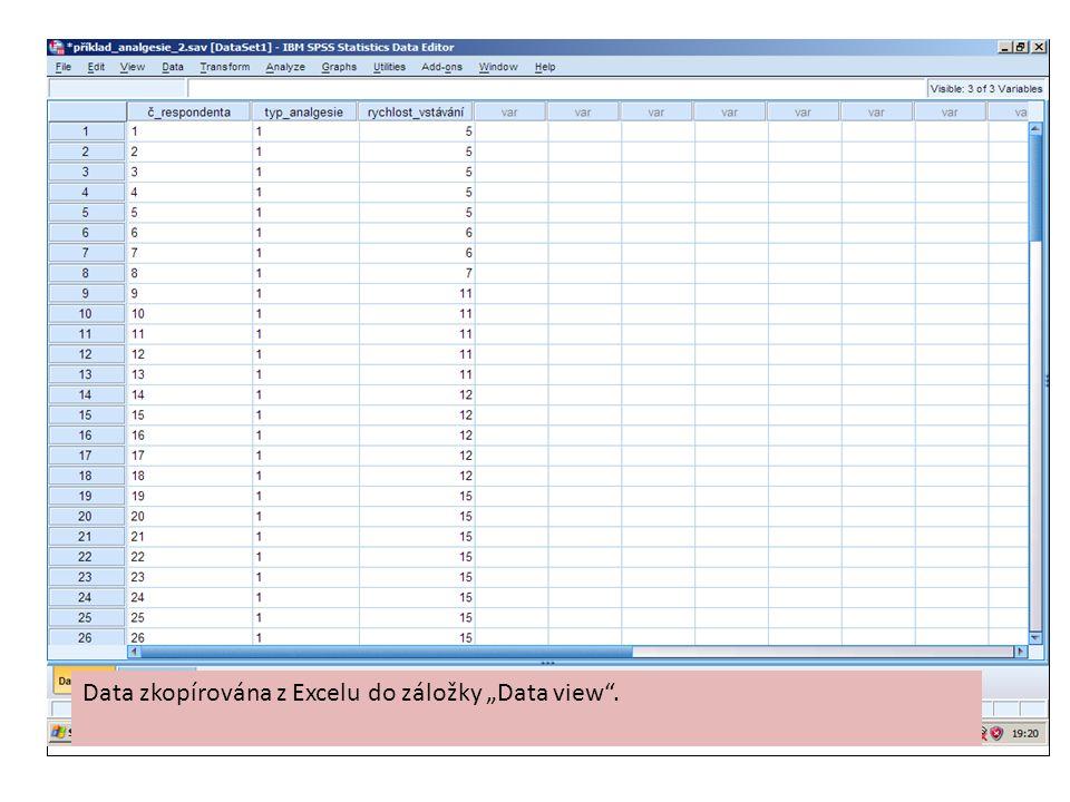 """Data zkopírována z Excelu do záložky """"Data view""""."""