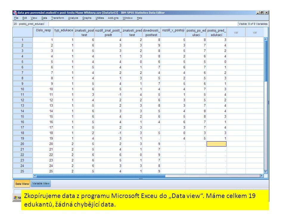 """Zkopírujeme data z programu Microsoft Exceu do """"Data view"""". Máme celkem 19 edukantů, žádná chybějící data."""