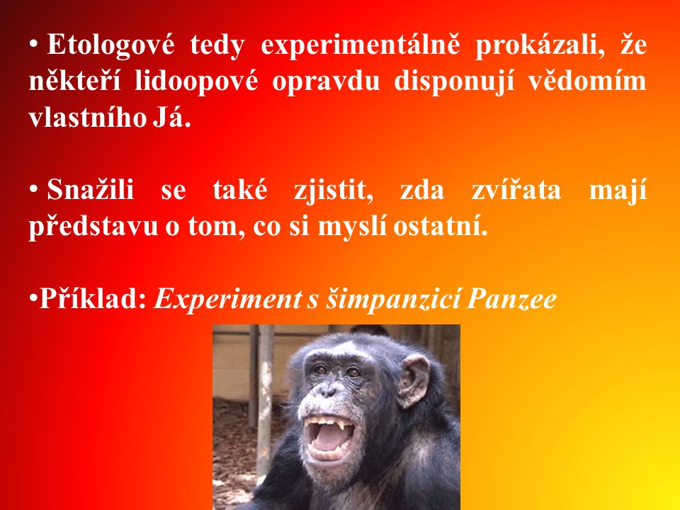 • Etologové tedy experimentálně prokázali, že někteří lidoopové opravdu disponují vědomím vlastního Já.