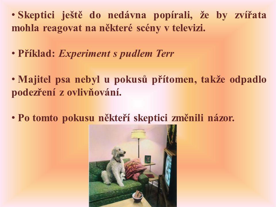 • Skeptici ještě do nedávna popírali, že by zvířata mohla reagovat na některé scény v televizi.