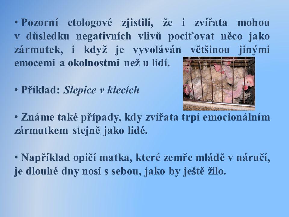 • Pozorní etologové zjistili, že i zvířata mohou v důsledku negativních vlivů pociťovat něco jako zármutek, i když je vyvoláván většinou jinými emocemi a okolnostmi než u lidí.