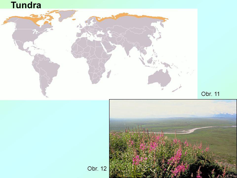 Tundra Obr. 12 Obr. 11