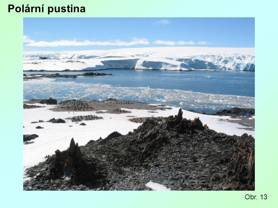 Polární pustina Obr. 13