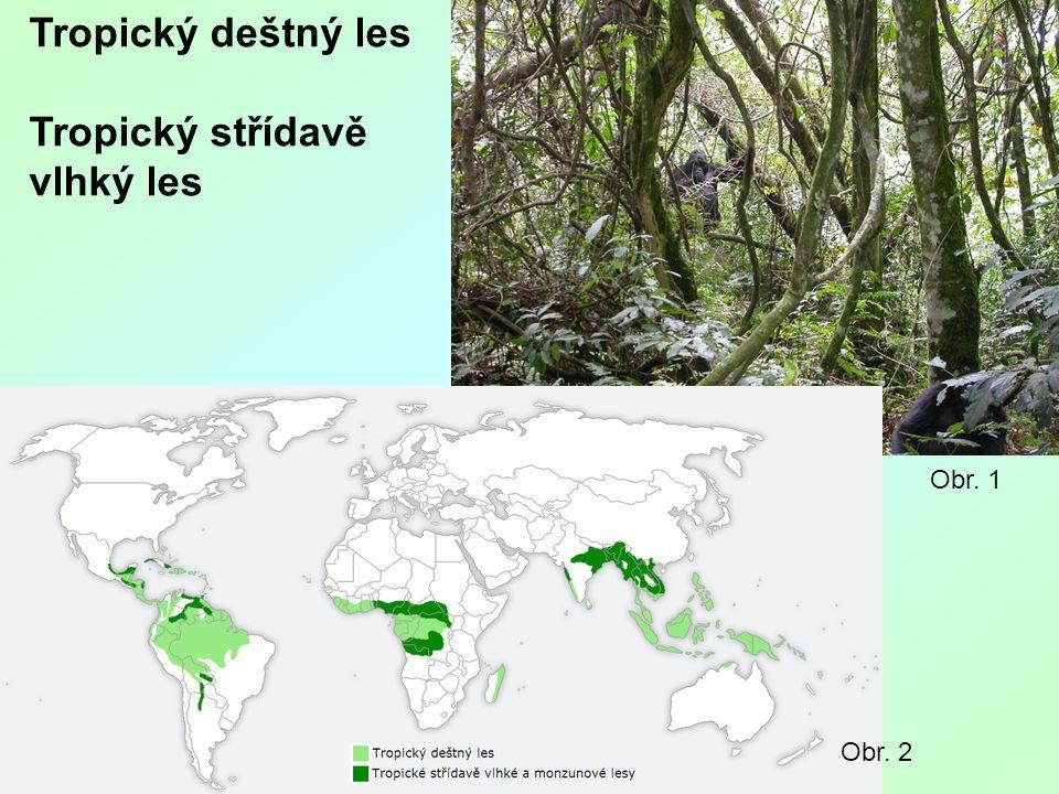 Tropický deštný les Tropický střídavě vlhký les Obr. 1 Obr. 2