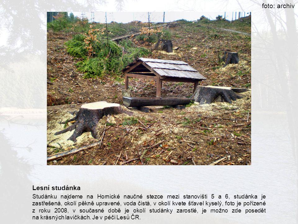 foto: archiv Lesní studánka Studánku najdeme na Hornické naučné stezce mezi stanovišti 5 a 6, studánka je zastřešená, okolí pěkně upravené, voda čistá