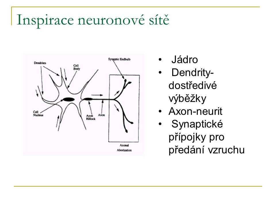 Inspirace neuronové sítě • Jádro • Dendrity- dostředivé výběžky •Axon-neurit • Synaptické přípojky pro předání vzruchu