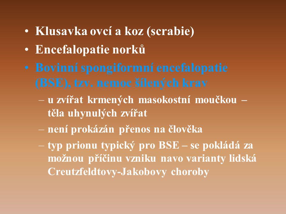 •Klusavka ovcí a koz (scrabie) •Encefalopatie norků •Bovinní spongiformní encefalopatie (BSE), tzv.
