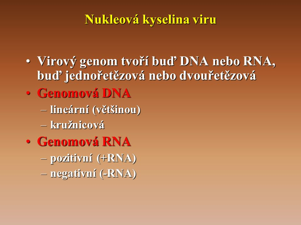 Nukleová kyselina viru •Virový genom tvoří buď DNA nebo RNA, buď jednořetězová nebo dvouřetězová •Genomová DNA –lineární (většinou) –kružnicová •Genomová RNA –pozitivní (+RNA) –negativní (-RNA)
