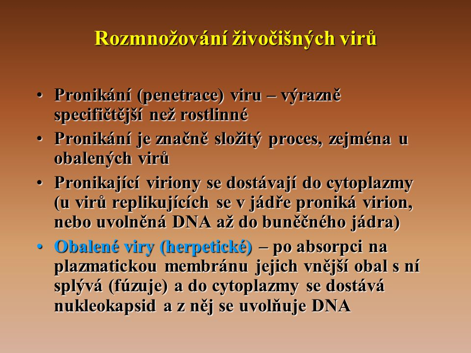 Rozmnožování živočišných virů •Pronikání (penetrace) viru – výrazně specifičtější než rostlinné •Pronikání je značně složitý proces, zejména u obalených virů •Pronikající viriony se dostávají do cytoplazmy (u virů replikujících se v jádře proniká virion, nebo uvolněná DNA až do buněčného jádra) •Obalené viry (herpetické) – po absorpci na plazmatickou membránu jejich vnější obal s ní splývá (fúzuje) a do cytoplazmy se dostává nukleokapsid a z něj se uvolňuje DNA