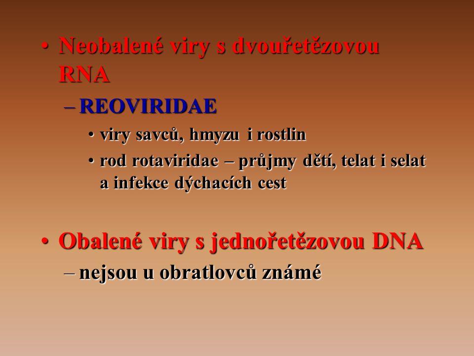 •Neobalené viry s dvouřetězovou RNA –REOVIRIDAE •viry savců, hmyzu i rostlin •rod rotaviridae – průjmy dětí, telat i selat a infekce dýchacích cest •Obalené viry s jednořetězovou DNA –nejsou u obratlovců známé