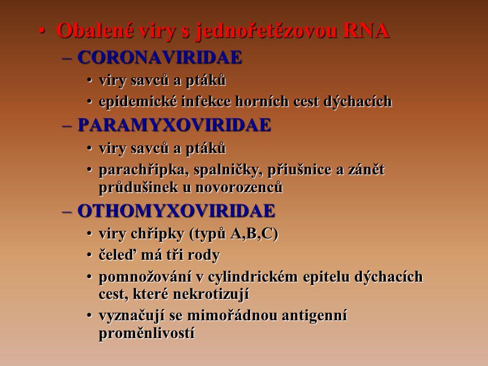 •Obalené viry s jednořetězovou RNA –CORONAVIRIDAE •viry savců a ptáků •epidemické infekce horních cest dýchacích –PARAMYXOVIRIDAE •viry savců a ptáků •parachřipka, spalničky, přiušnice a zánět průdušinek u novorozenců –OTHOMYXOVIRIDAE •viry chřipky (typů A,B,C) •čeleď má tři rody •pomnožování v cylindrickém epitelu dýchacích cest, které nekrotizují •vyznačují se mimořádnou antigenní proměnlivostí