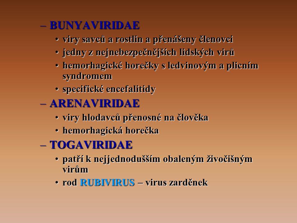 –BUNYAVIRIDAE •viry savců a rostlin a přenášeny členovci •jedny z nejnebezpečnějších lidských virů •hemorhagické horečky s ledvinovým a plicním syndromem •specifické encefalitidy –ARENAVIRIDAE •viry hlodavců přenosné na člověka •hemorhagická horečka –TOGAVIRIDAE •patří k nejjednodušším obaleným živočišným virům •rod RUBIVIRUS – virus zarděnek