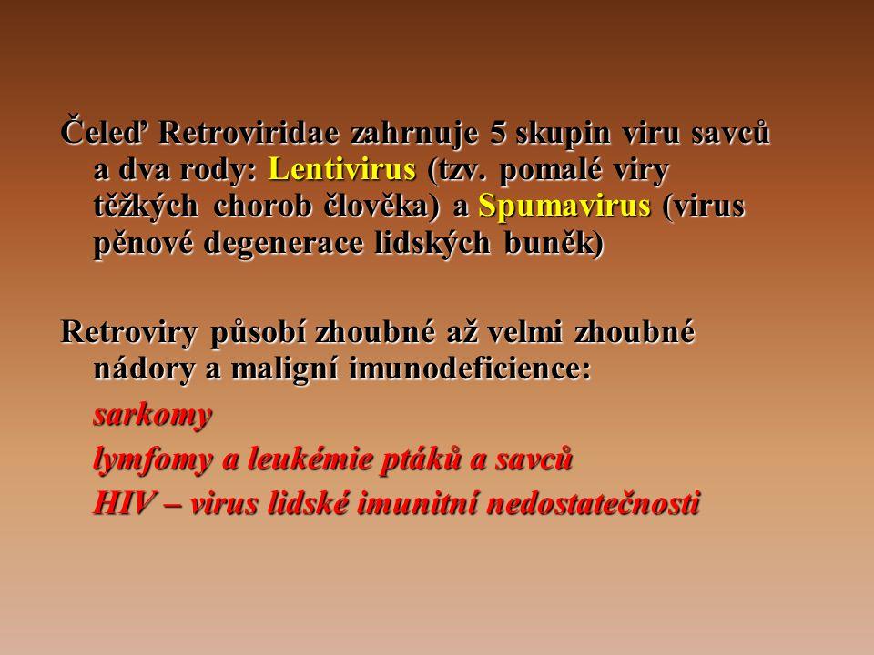 Čeleď Retroviridae zahrnuje 5 skupin viru savců a dva rody: Lentivirus (tzv.
