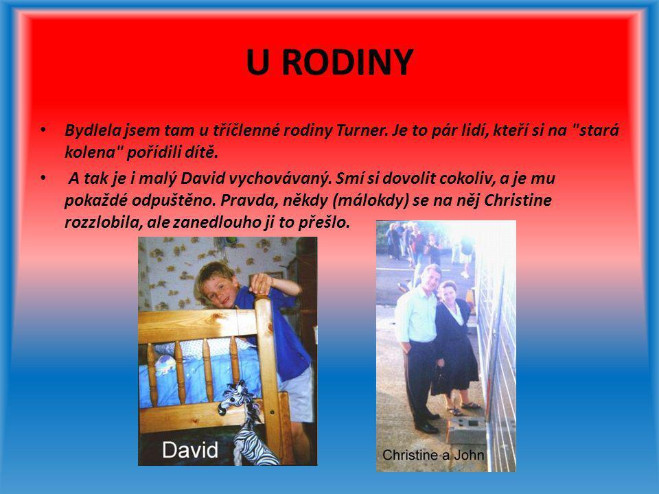VÝLETY S DAVIDEM • Většinu svého času jsem trávila s Christine a s Davidem.