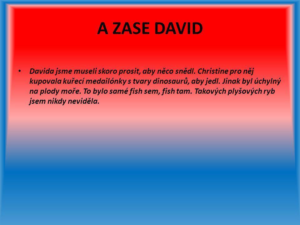 A ZASE DAVID • Davida jsme museli skoro prosit, aby něco snědl. Christine pro něj kupovala kuřecí medailónky s tvary dinosaurů, aby jedl. Jinak byl úc