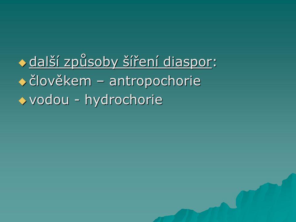  další způsoby šíření diaspor:  člověkem – antropochorie  vodou - hydrochorie