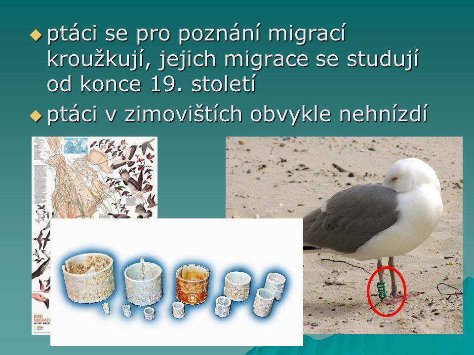 ptáci se pro poznání migrací kroužkují, jejich migrace se studují od konce 19. století  ptáci v zimovištích obvykle nehnízdí