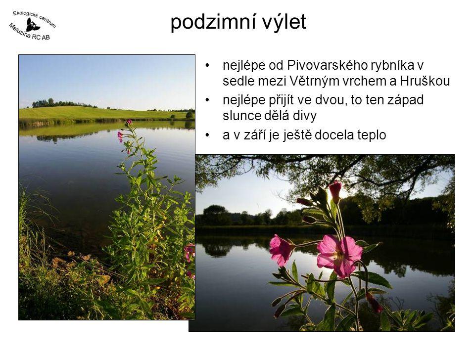podzimní výlet •nejlépe od Pivovarského rybníka v sedle mezi Větrným vrchem a Hruškou •nejlépe přijít ve dvou, to ten západ slunce dělá divy •a v září